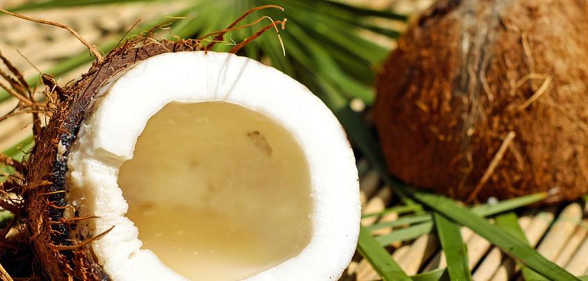 Kokosoel gesund